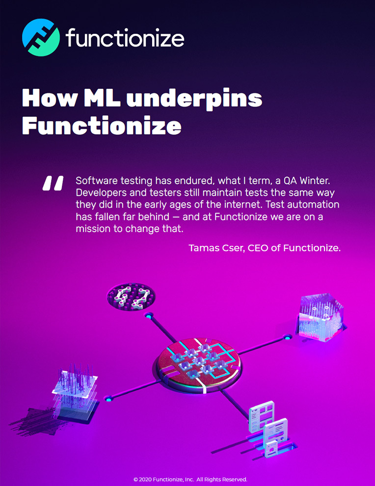 How ML underpins Functionize