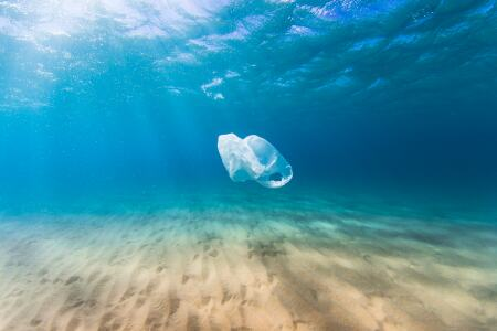 Bioabfallbeutel im Meer