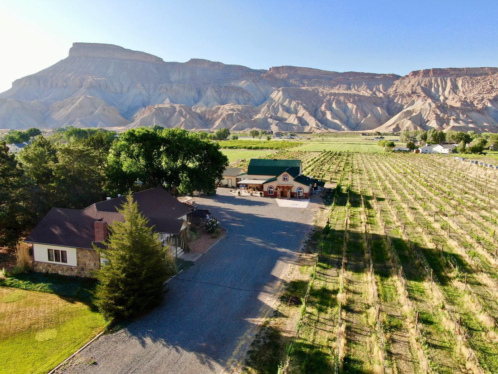 photo-of-carboy-winery-future-vineyard-winery-site-Palisade-Colorado