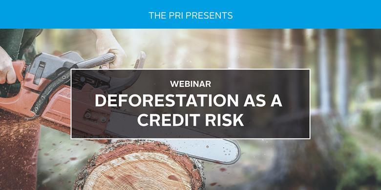 Deforestation as a Credit Risk (PRI)