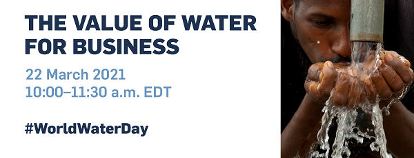 The Value of Water for Business