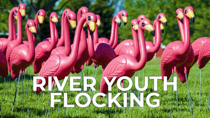 River Youth Flocking
