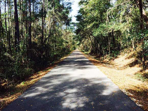 Riding Your Bicycle Safely in Florida - Florida's Rails-To-Trails