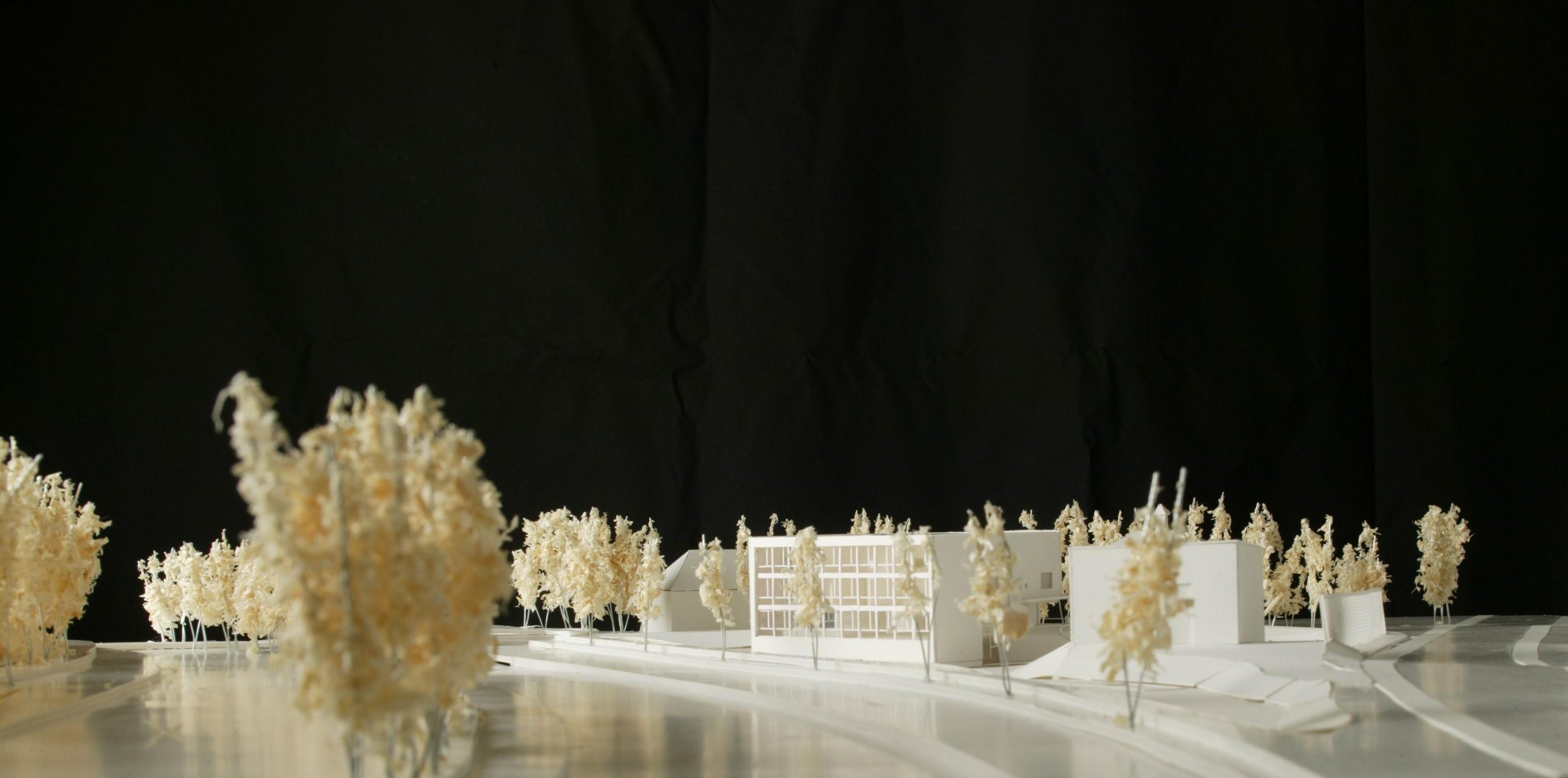 Wettbewerbe-Schulhaus Sennhof