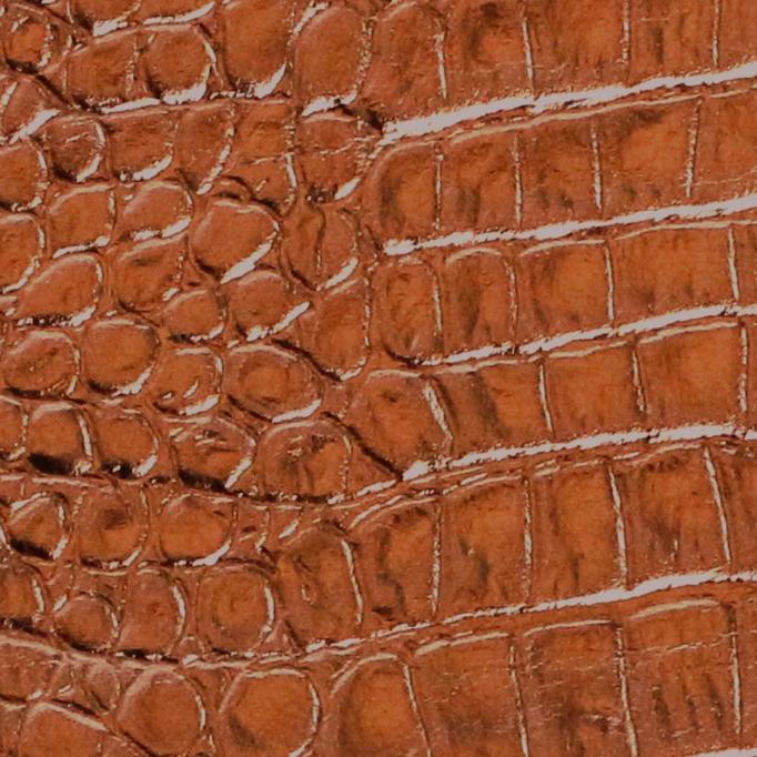 Champaign Croc