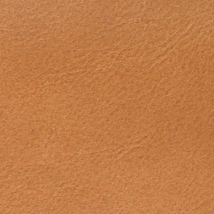 Camel Tan