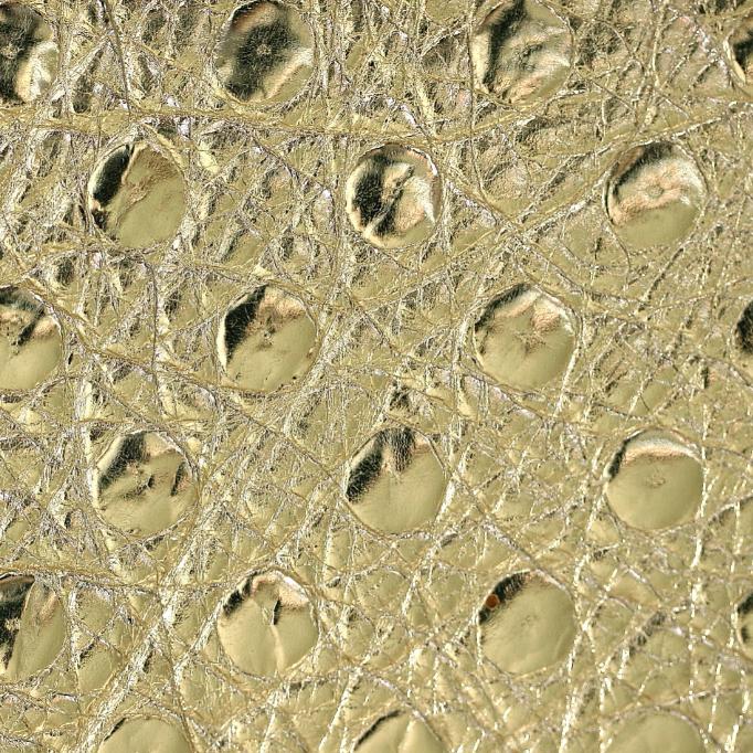 Struzzo Oro