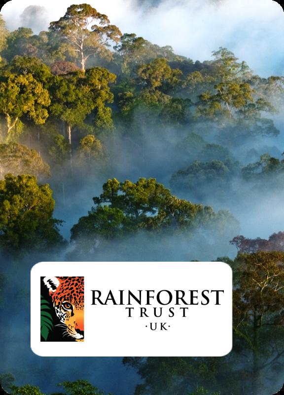 Rainforest Trust UK