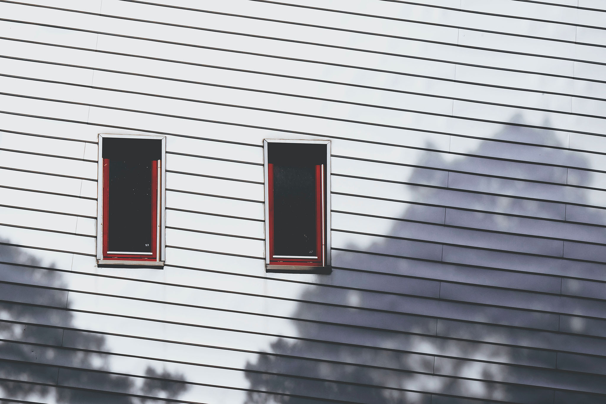 Pro's and Cons of Vinyl Siding