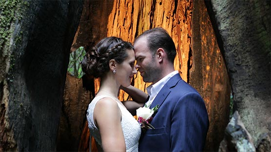 husband and wife facing each other in the opening of a redwood tree in Crescent City, Ca.