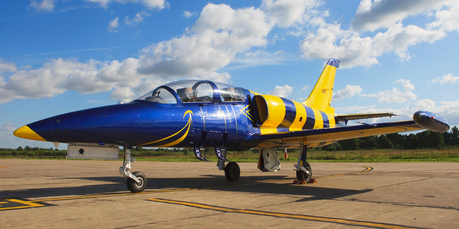 L-39 Albatros in Tampa