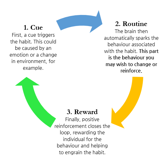 The Habit Loop - adapted from The Power of Habit by Charles Duhigg