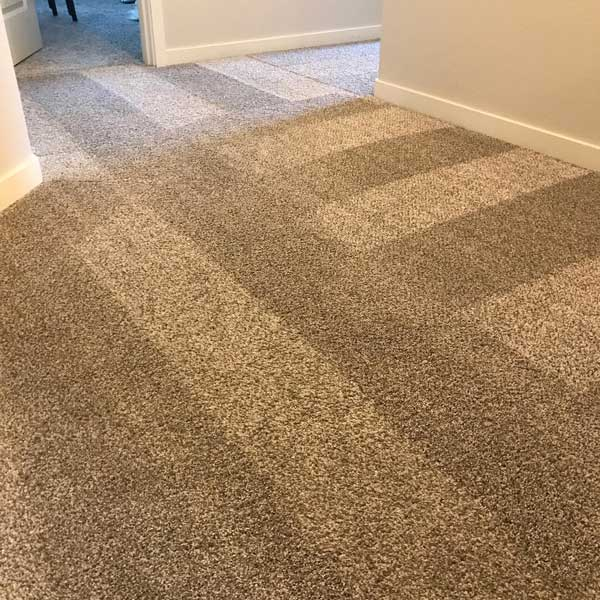 Carpet cleaning project in Camus, WA