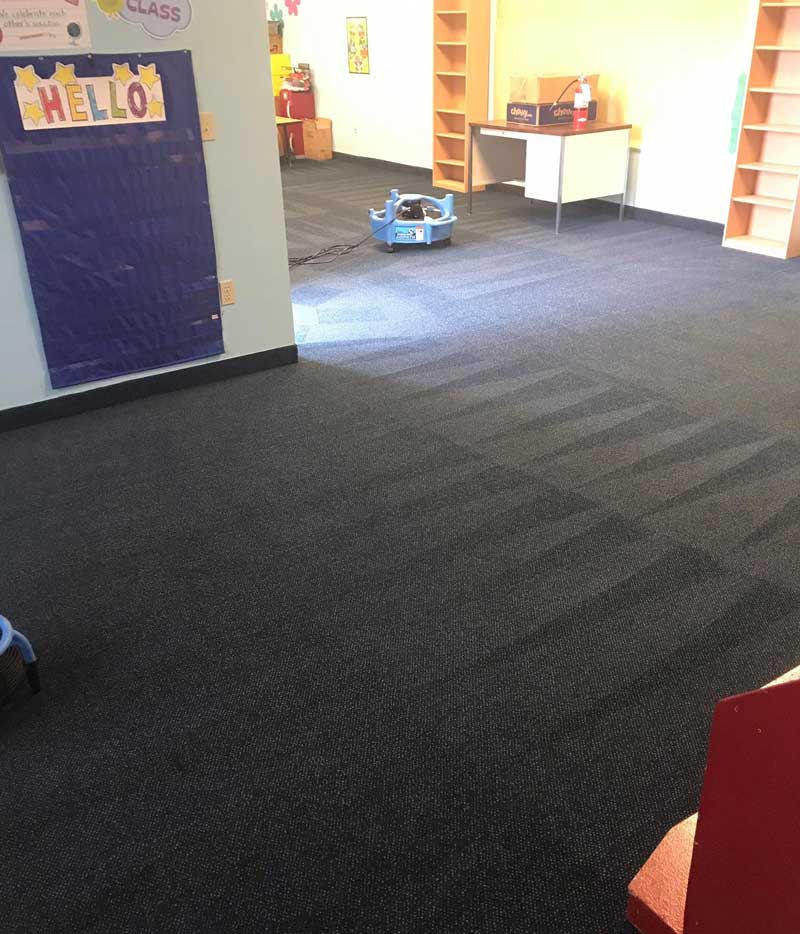 Commercial carpet cleaning in Camus, WA