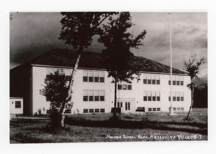 Image is a summer view of the west side of the Palmer school building with three trees in foreground and the flag pole evident.
