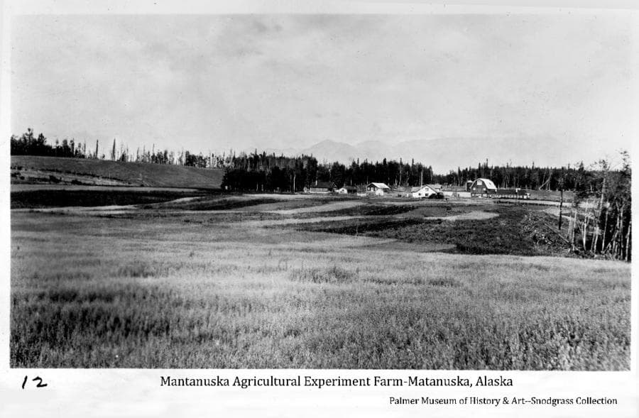 Image shows fields & experimental plots in foreground, buildings of the experiment farm in middle ground with forest behind, and mountains faintly in background.