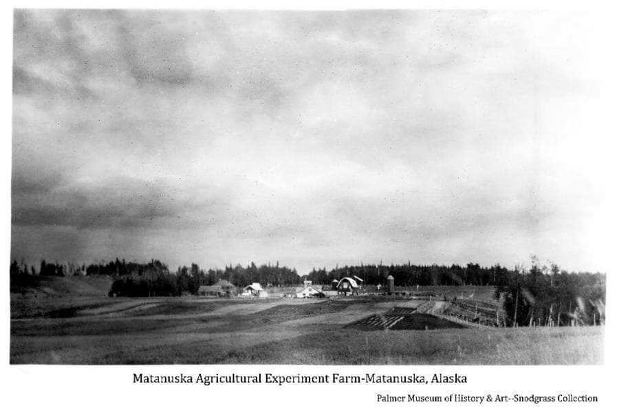 Image shows fields & experimental plots in foreground, buildings of the experiment farm in middle ground with forest behind.