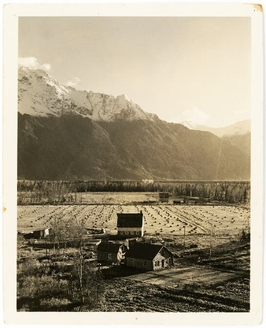 Image is a low oblique showing a Matanuska Colony farmstead in foreground and another in middle ground, fields of shocked grain, and snow-capped Pioneer Peak in background.