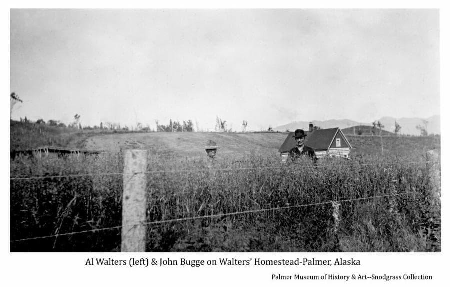 Image shows wire fence on wooden posts in foreground with two men standing in a field of grain behind. A two story log house is evident in middle ground with the top of a pole barn at left.  A cleared hillside and forest fringe are in background. This is the homestead originally built by Mr. Hickey and owned by Al Walters at the time the photo was taken. The men are identified as Al Walters at left & John Bugge at right.