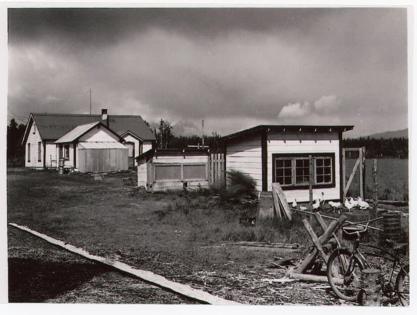 Image shows a white house and white outbuildings including two small chicken houses and a small greenhouse. Several white chickens are apparent and milk cans are next to the outbuilding near the house. A bicycle and sawbuck are in the foreground, a field in middle ground with forest and mountains visible beyond. This appears to be another view of House#1.