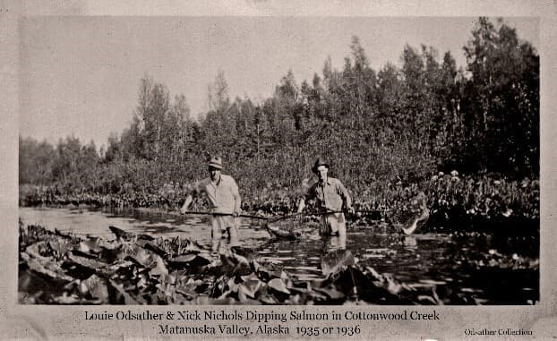 """Image shows two men, identified asLouis Odsather and """"Nick"""" Nichols, standing in the water of Cottonwood Creek, each holding a long-handled dip net with a salmon in it. Lilly pad plants are seen in foreground with meadow vegetation and trees on the far side of the creek."""