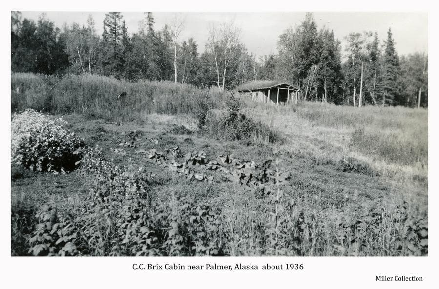 Image shows a sod-roofed log cabin atop a slight hill with garden crops on the hillside in foreground.  Heavy forest forms the backdrop behind the cabin.