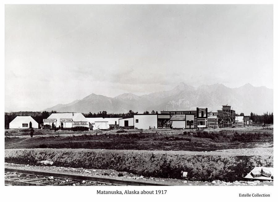 Image is a northeast view of Matanuska townsite.  Railroad tracks are in immediate foreground, numerous tents and buildings are in middle ground with trees and mountains beyond.  Numerous signs are visible on buildings and several people are evident.