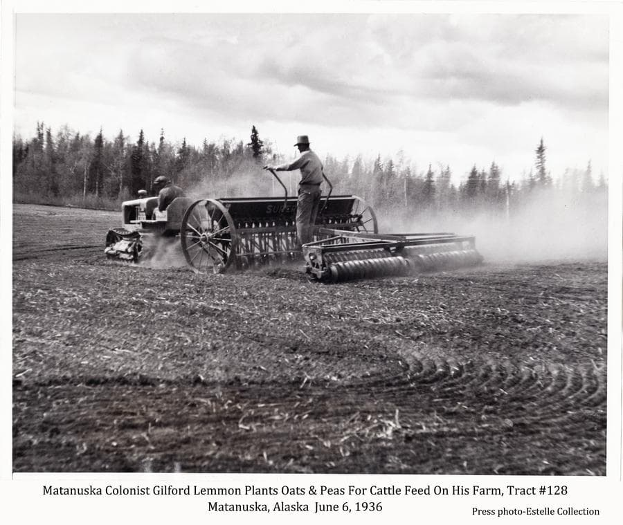 Image shows a prepared field with a cat tractor pulling a grain drill and cultipacker in middle ground.  One man drives the tractor while another rides the grain drill.  A dust cloud rises from the machinery.  Heavy forest is at the edge of the field in background.  Information with the photo identifies this as Matanuska Colonist Gilford Lemon planting oats and peas for cattle feed on his farm on tract #128, June 6, 1936.