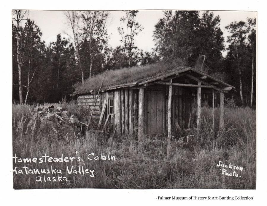 Image is a summer view of a log cabin with sod roof, high grass surrounds it with a pile of wood on the left, heavy birch forest is behind.  This cabin was located east of Palmer past the Matanuska River bridge on the north side of the highway.