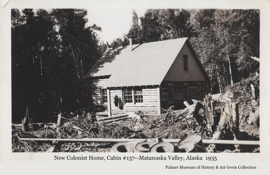 Image is of a log house, identified as cabin #137.  Exterior construction appears to be complete with many stumps, lumber and barrels in the yard.   Heavy birch forest is a close backdrop.