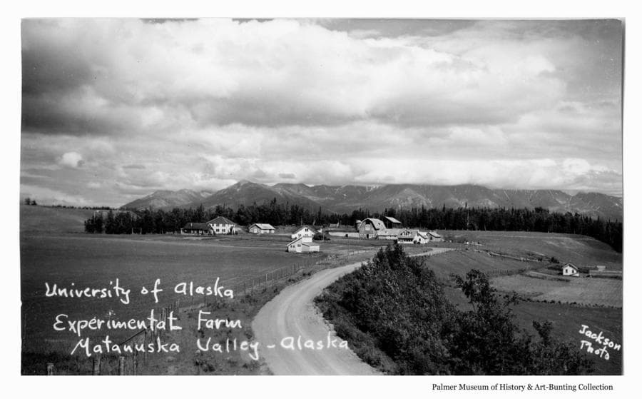 Image is an easterly view of the Matanuska/Wasilla road leading past fields to the Experiment Farm complex.  The barns and houses are at center middle ground and a small house and greenhouse are evident at the base of the hill to the right. Heavy forest is behind the complex and mountains are in the background under cloudy skies.
