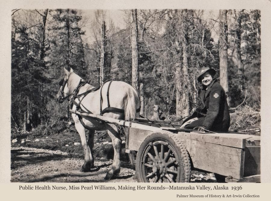 Image shows a woman, identified as Miss Pearl Williams, Red Cross Nurse, in a cart pulled by a white horse.   Cottonwood and spruce forest is the backdrop.