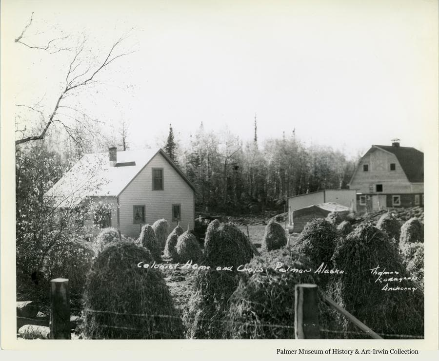 Image is of a Colony farmstead showing the house, barn and outbuildings in middle ground with a fence and numerous haystacks in foreground.  Birch and spruce forest forms the backdrop.