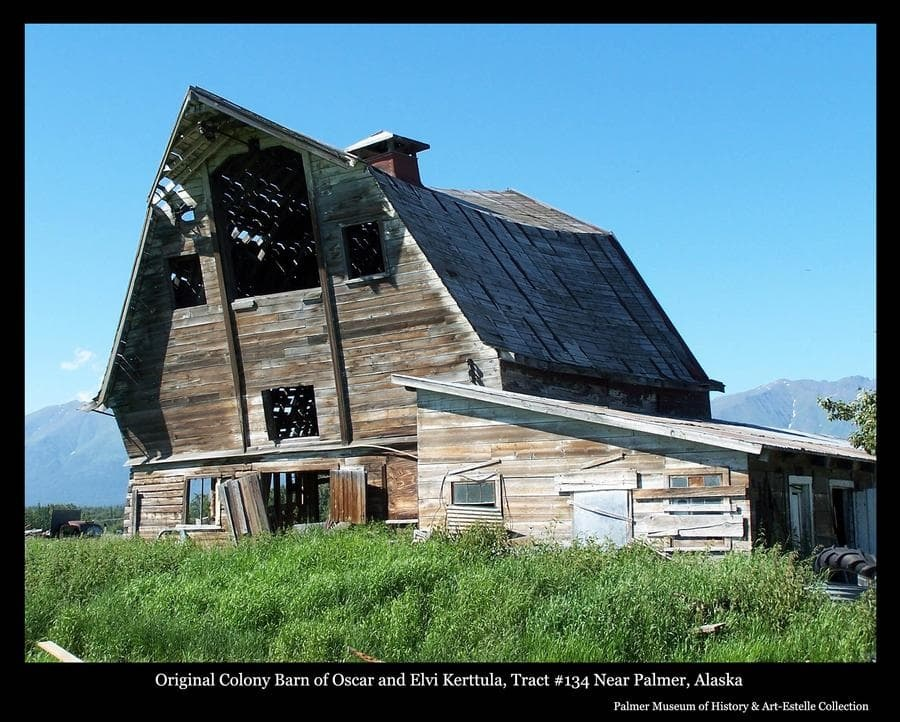 Image is a summer view of a Colony Barn, identified as located on Tract #134 north of Palmer, having originally belonged to Colonists Oscar and Elvi Kerttula.  The barn exhibits significance evidence of advanced stages of collapse and came down in 2006.  A smaller attached structure, perhaps a milking parlor, is at right, Talkeetna Mountains evident in background.