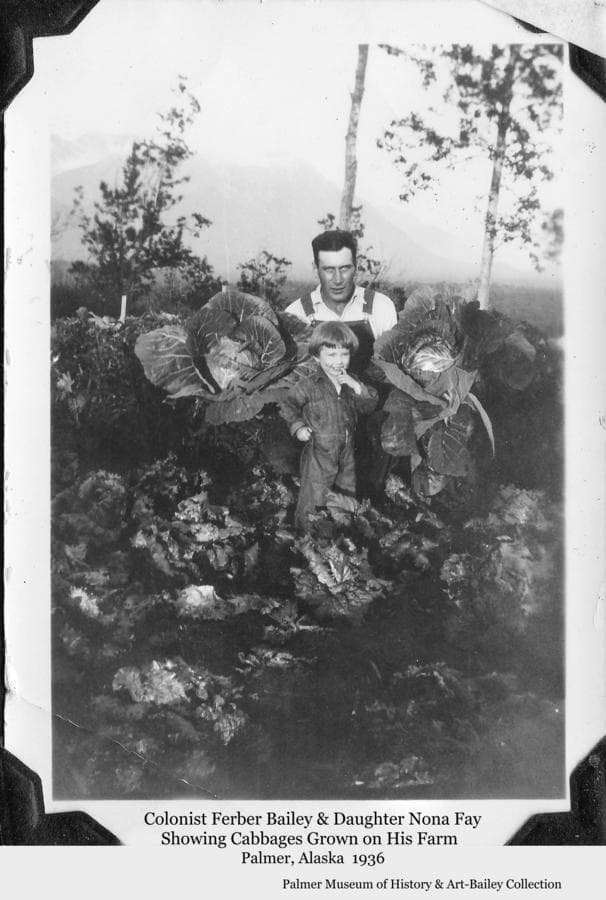 Image is of Colonist Ferber Bailey and daughter Nona Fay in a vegetable patch showing off cabbages grown on the Bailey farm on Tract #152 near Palmer.  Chugach Mountains are faintly visible in background.