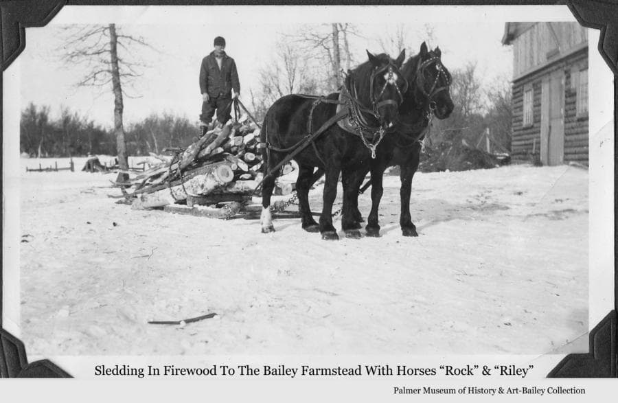 "Image is a winter scene of a man standing atop a sled loaded with firewood logs and being pulled by two horses, identified as ""Rock"" and ""Riley"".  A portion of the Bailey barn is visible showing the logs before they were covered with horizontal lap siding boards."