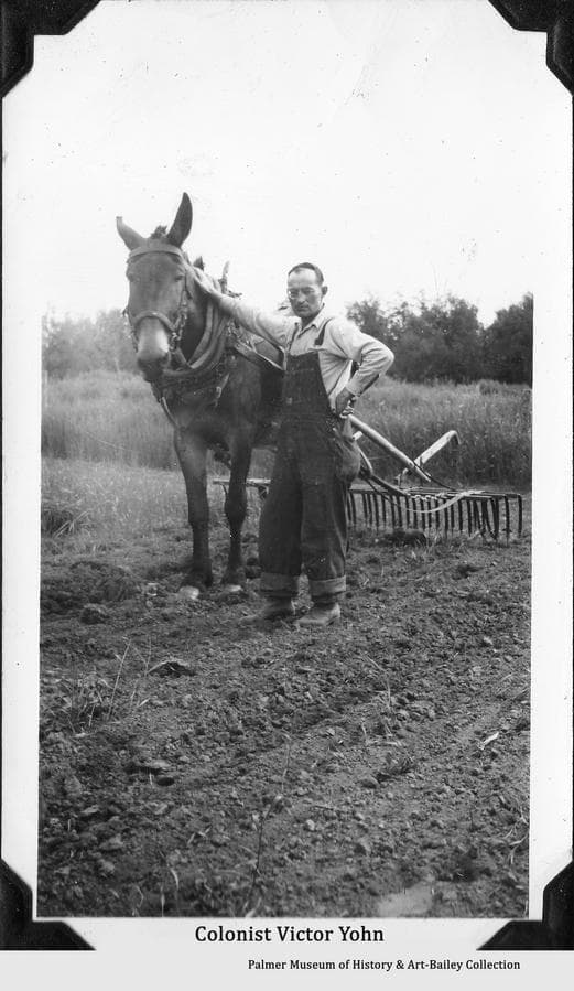 Image is of Colonist Victor Yohn pausing with his mule from harrowing ground in preparation for spring planting.  Original Colonists Victor, and Manila Bay Yohn drew tract #164 near Bodenburg Butte for their new farm.