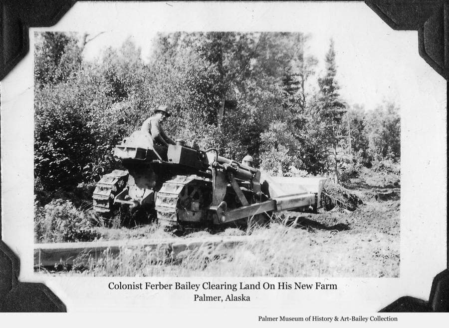 Image shows a man, identified as Colonist Ferber Bailey, operating a caterpillar tractor, clearing brush and trees.   Heavy spruce, birch and alder forest beyond.