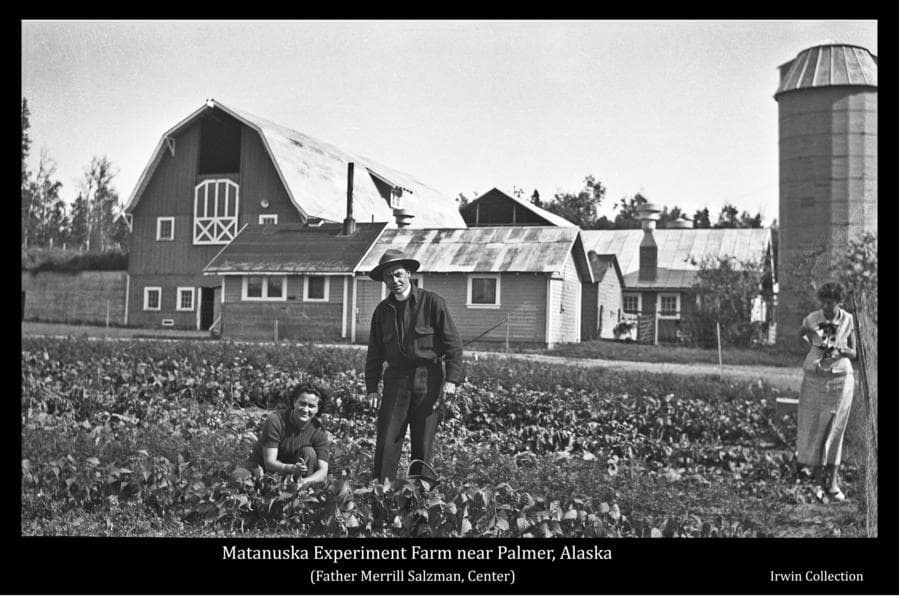 This image shows two unidentified women and Father Merrill Sulzman, Palmer Catholic priest, standing in a bean field in front of the barn and other buildings of the Matanuska Experiment Farm near Matanuska, Alaska.  They appear to be in the process of picking beans.