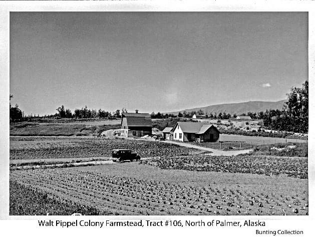View is of a Colony farmstead, identified as that of Colonists Walter & Melva Pippel on tract #106. Open fields planted with various vegetables are prominent in foreground with the farmstead house and barn in middle ground. A touring car is prominent on the road passing through the property in the middle ground. Rooftops of the adjacent farmstead's barn and house on tract #112 are visible beyond. Trees border fields in middle and background with Talkeetna Mountains in far background.