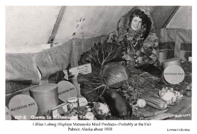 """Image is of a young woman in a fur parka, identified as Lillian Loberg, sitting amongst a number of vegetable and """"Matanuska Maid"""" product cartons arranged for display. Location appears to be in a tent, possibly at the Matanuska Valley Fair."""