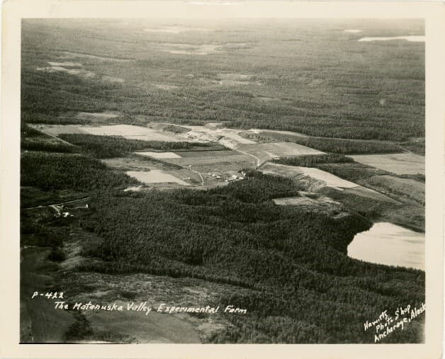 Image is a high oblique west oriented overview of the Matanuska Experiment Farm and surrounding landscape. Land clearing patterns are obvious. Several small independent farmsteads are visible in small forest clearings. Lakes and roads are visible.