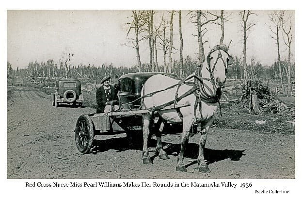 Image shows a woman, identified as Miss Pearl Williams, Red Cross Nurse, in a cart pulled by a white horse, on a gravel road. Two automobiles are on the road behind the cart. Trees and clearing slash are visible in background.