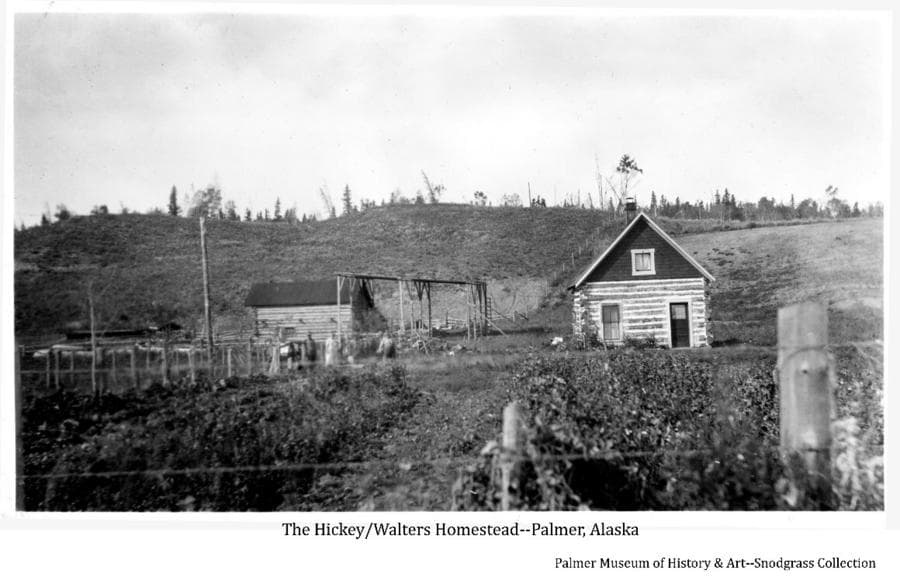 Image shows wire fence on wooden posts in fore & middle ground. A two story log house is prominent in middle ground with another log building and pole barn beside. Two men and a woman stand in middle ground. A cleared hillside and forest fringe are in background. This is the homestead originally built by Mr. Hickey and owned by Al Walters at the time the photo was taken.