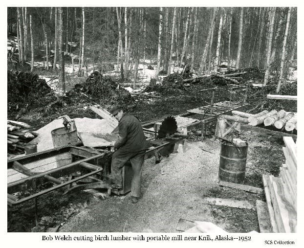 Image shows a man, identified as Bob Welch, standing next to a portable sawmill in a birch forest setting. The mill carriage and circular saw blade are obvious. A stack of lumber is evident in foreground and logs to be sawn are visible. Two fuel barrels are evident, one with a pump attached. Background is composed of a forest stand. largely composed of slender birch trees. Information associated with the photo indicates this was the only operation in Alaska specializing in producing birch lumber at the time.