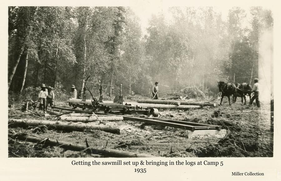 Image shows a group of men in a small forest clearing working around a portable sawmill.  One man is visible driving a two-horse team dragging logs to the mill.  This mill was set up near Camp 5 north of Palmer.