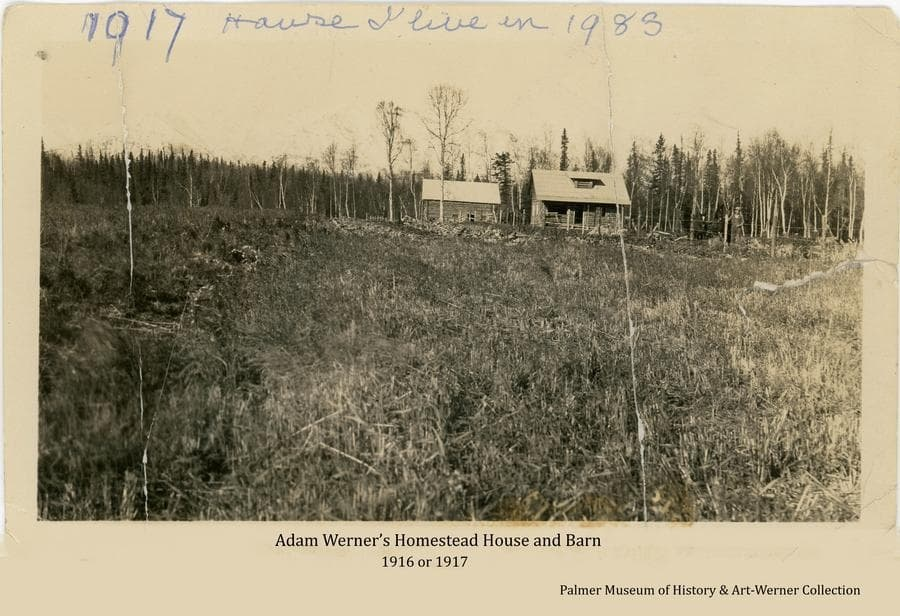 """Image shows Adam Werner's permanent log house and barn on his homestead """"up the hill"""" from his first cabin site location.  A cleared field is in foreground with the house and barn in middle ground and forest behind.  Mr. Werner and two horses are visible behind a fence to the right.  Note on reverse: """"Adam Werner.  Palmer, 1917.  House & barn took 4 years to finish inside and out of the house.  Windows would not be shipped from Seattle.  Cornelius grandad windows & 120 sheets of mettle for barn by barge.  Montgomery say it is a foreign country."""""""