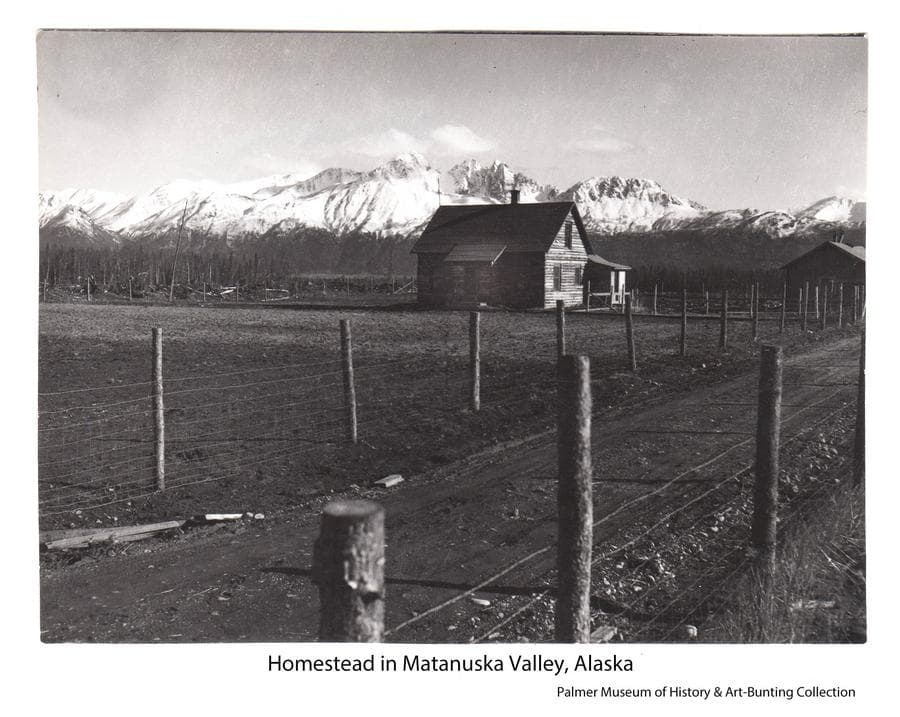Image is a southerly view of a two-story log house in center middle ground with another building at right.  A single lane road is in foreground with wood posts and hog wire fence on both sides.  Stump piles are visible at left.  Snow-clad mountains are in background.