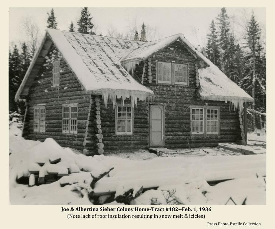 Image is a winter scene of a log home in a forest setting with snow on the ground and icicles hanging from the eves of the house.  The house is identified as that of Colonists Joe & Albertina Sieber on Colony tract #182.  The icicles and apparent melted snow on the roof indicate inadequate insulation, characteristic of many  Colony houses.