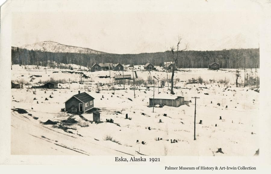 Image is a winter view of the coal-mining community of Eska located in the Matanuska River Valley north of Palmer, Alaska.  Numerous houses are visible.  Power poles are evident.  Many stumps are apparent in cleared land around the buildings with heavy forest beyond.  Mountains are faintly visible in background.